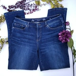 Christopher and Banks Modern Fit Jeans